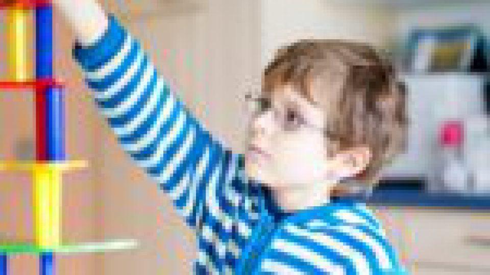 Développement cognitif et dispositif d'acquisition linguistique